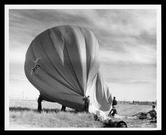 Photo DON PICCARD BALLONNS Inc - Newport Beach - Montgolfière - 25,3 X 20,2 Cm Environ - Aviazione