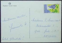 Cyprus - Postcard To Belgium 1974 Grapes 25M Solo Hotel Limassol - Wein & Alkohol