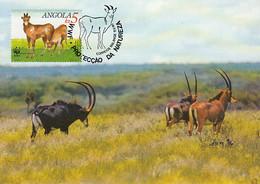 Angola 1990 Maxicard Sc #784 5k Giant Sable Antelope Adult Female, Calf WWF - Angola