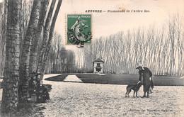 89-AUXERRE-N°T2617-D/0051 - Auxerre