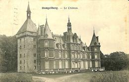 031 350 - CPA - Belgique - Dongelberg - Le Château - Jodoigne