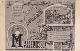 04 /UN SOUVENIR DE MALLEMOISSON / LES GRILLONS - Andere Gemeenten