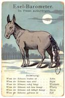 ESEL BAROMETER / ÂNE BAROMÈTRE Avec QUEUE En FICELLE / GERMAN DONKEY BAROMETER ~ 1905 - '910 (af466) - Móviles (animadas)