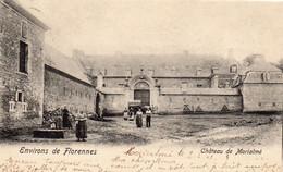 Environs De Florennes.  Château De Morialmé. - Florennes