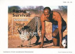 Namibia Hb 49 - Namibia (1990- ...)