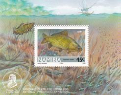 Namibia Hb 14 - Namibia (1990- ...)