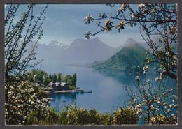 102664/ HAUTE SAVOIE, Lac D'Annecy, La Baie De Talloires - Francia