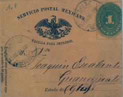 1891 MÉXICO , FAJA PARA IMPRESOS CIRCULADA , MÉXICO D.F. - GUANAJUATO , LLEGADA AL DORSO - Messico
