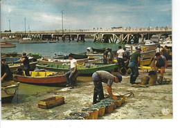 85 - L ' AIGUILLON SUR MER - T.Belle Vue Animée Couleur Du Port ( Pêcheurs ) - Francia