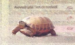 ARMENIE 2007 - W.W.F. - Tortue Testudo Horsfieldi-carnet - Unused Stamps