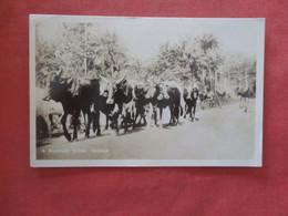 RPPC Roadside Scene   Africa > Nigeria    Ref  4379 - Nigeria