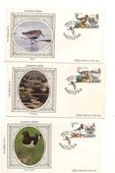 ALDERNEY  F.D.C. OISEAUX/ BIRDS 12 JUIN 1984 - Alderney
