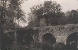 CPSM 85 Vendée - Les MOUTIERS Sur Lay - Le Vieux Pont De Pierre - Francia