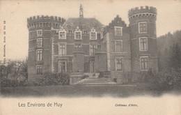 Environs De Huy  , Chateau D'Ahin ,( Huy , Wanze ),(  Nels Série 55 N° 10  ) - Huy