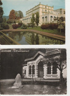 VIVONNE -LES-BAINS ( 01 )  LA  SOURCE VIDART & LE CASINO - 2 CPM ( 20 / 9 / 283  ) - Divonne Les Bains