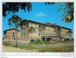 ROMA:  CENTRO  NAZARETH  -  MOVIMENTO  FAC  -  PIEGA  D' ANGOLO  -  FG - Education, Schools And Universities
