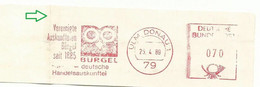 EMA METER STAMP CHOUETTE GUFO OWL EULE HIBOU BIRD - GERMANY BURGEL 1989 Ulm Donau ) FOLD - Eulenvögel