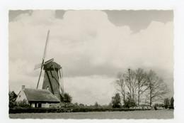 D477 - Hoeven - Molen - Moulin - Mill - Mühle - - Other