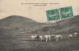 CPA-30-CONCOULES-Oeuvre Catholique Des Enfants à La Montagne-Soirée D'automne-Moutons - Other Municipalities