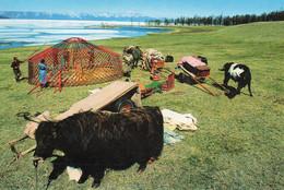 Mongolie - Mongolia