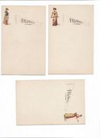 21 Menus  Illustrés Thèmes Divers, De 9,5 X 14. à 13 X 19cm. état TTTB. Voir Scans - Menú