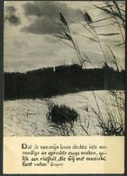 Gelopen Kaart Met Gedicht Tagore - Riet Aan Oever - - Flores, Plantas & Arboles