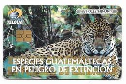 Guatemala, Ladatel,  Used Chip Phonecard, No Value, Collectors Item, # Guatemala-14 - Guatemala