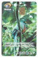 Guatemala, Ladatel,  Used Chip Phonecard, No Value, Collectors Item, # Guatemala-19 - Guatemala