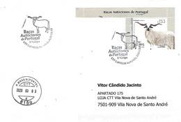 "Postmark - Portuguese Autochtnonous Breeds 3º Group - The ""Churra Algarvia"" Sheep (Stamp From Miniature Sheet) - Farm"