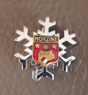 Broche Insigne Brevet Club Ecole Ski Esf - Pins
