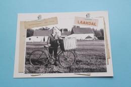BAKKERSGAST JAN DENS > Laakdal ( Project Kempen Kookt / Ontwerp Dasi ) 2012 ! - Laakdal