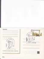 Slovakia, Timbres Occasionnels 71. Výročie Smrti Štefánika 4. 5. 1990, - Postal Stationery