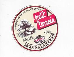 ETIQUETTE  DE  FROMAGE   NEUVE 8 Cm LAITERIE D'ORVAL EN BERRY SAINT AMAND CHER PETIT TERROIR - Cheese