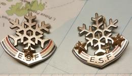 Broche Insigne Figures Glaces Ski Esf Ffsg - Pins