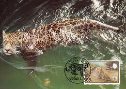 Belize 1983 Maxicard Sc #691 85c Jaguar WWF - Belize (1973-...)