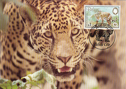 Belize 1983 Maxicard Sc #692 $1 Jaguar WWF - Belize (1973-...)