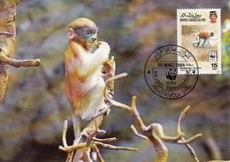 Brunei 1991 Maxicard Sc #424 15c Proboscis Monkey WWF - Brunei (1984-...)