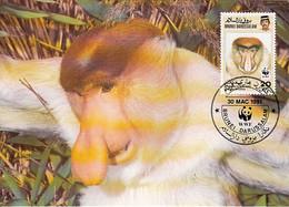 Brunei 1991 Maxicard Sc #425 20c Proboscis Monkey WWF - Brunei (1984-...)