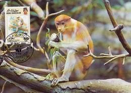 Brunei 1991 Maxicard Sc #426 50c Proboscis Monkey WWF - Brunei (1984-...)