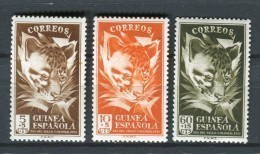 Guinea Española 1951. Edifil 306-08 ** MNH. - Guinea Española