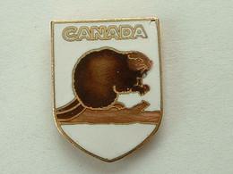 Pin's CANADA - CASTOR - Cities