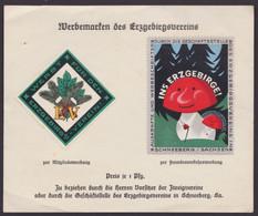 """""""Schneeberg"""", Sachsen, 2 Versch. Farbige Vignetten, 20er Jahre, Auf Pass. Blatt - Covers & Documents"""