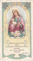 Santino Fustellato S.agnese - Devotion Images