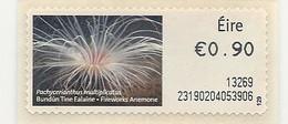VIE MARINE: ACTINIE (ANEMONE De MER) - EIRE - 0.90€ Auto-adhésif  - NEUF - Coquillages