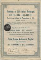 SOCIETE DE CULTURE DE CAOUTCHOUC ET CAFE - DOLOK BAROS - INDONESIE -ANNEE 1910 - Asia