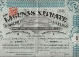 CHILI -COMPAGNIE LAGUNAS NITRATE - CERTFICAT DE 1 ACTION -ANNEE 1895 - Mines