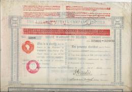 CHILI - THE LAUTARO NITRATE COMPANY -CERTIFICAT DE 20 ACTIONS -ANNEE 1925 - Mines