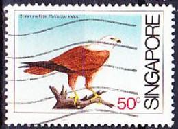 Singapur - Brahminenweihe (Haliastur Indus) (MiNr: 4420) 1984 - Gest Used Obl - Oman