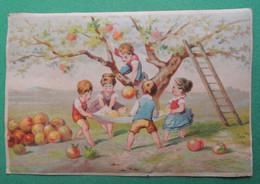 CHROMO  Testu Massin ? TM 32 -16 Ou 18. Fruits Démesurés Grosses Pommes. Enfants. Cueillette  échelle - Kaufmanns- Und Zigarettenbilder