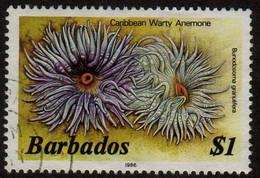 Barbados - #656c - Used - Barbados (1966-...)